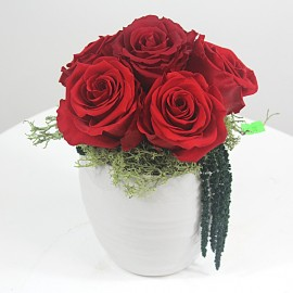 Ilgai žydinčios rožės...