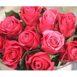 """Rožės """"Pink Tacazzi"""""""