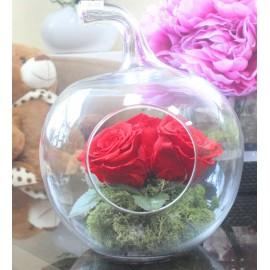 Miegančių rožių kompozicija...