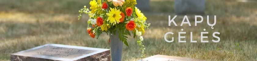 Vėlinių gėlės